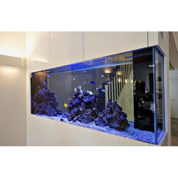 GG - Commercial Aquarium 43