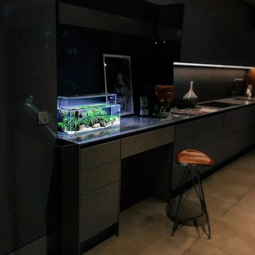 GG - Residential Aquarium 40