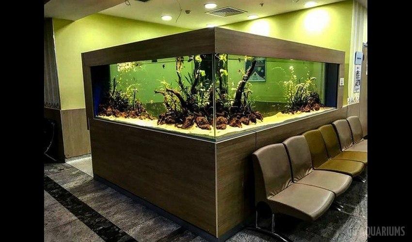 GG - Commercial Aquarium  2