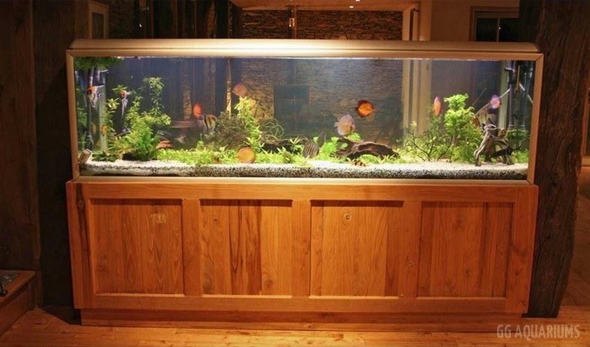 GG - Commercial Aquarium  11