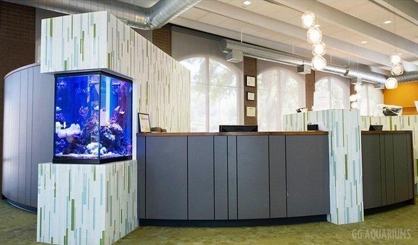 GG - Commercial Aquarium  12