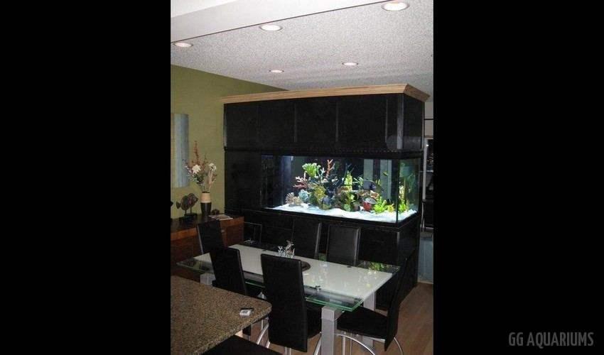 GG - Commercial Aquarium  13