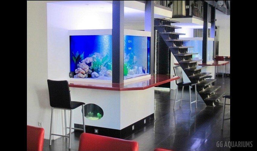 GG - Commercial Aquarium  14