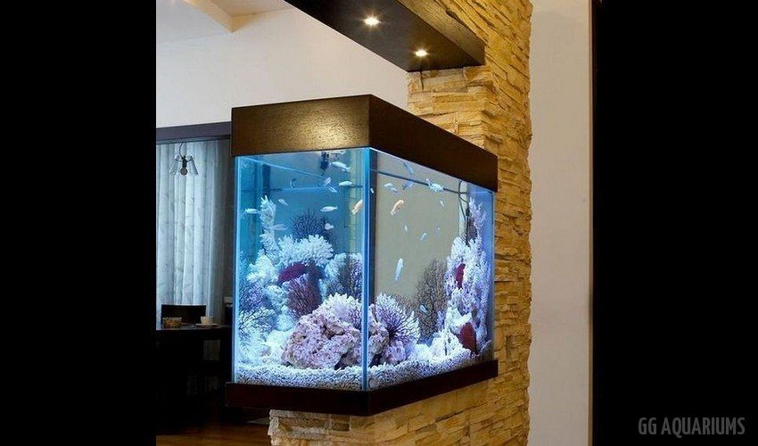 GG - Residential Aquarium  17