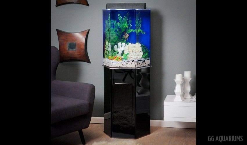 GG - Residential Aquarium  25