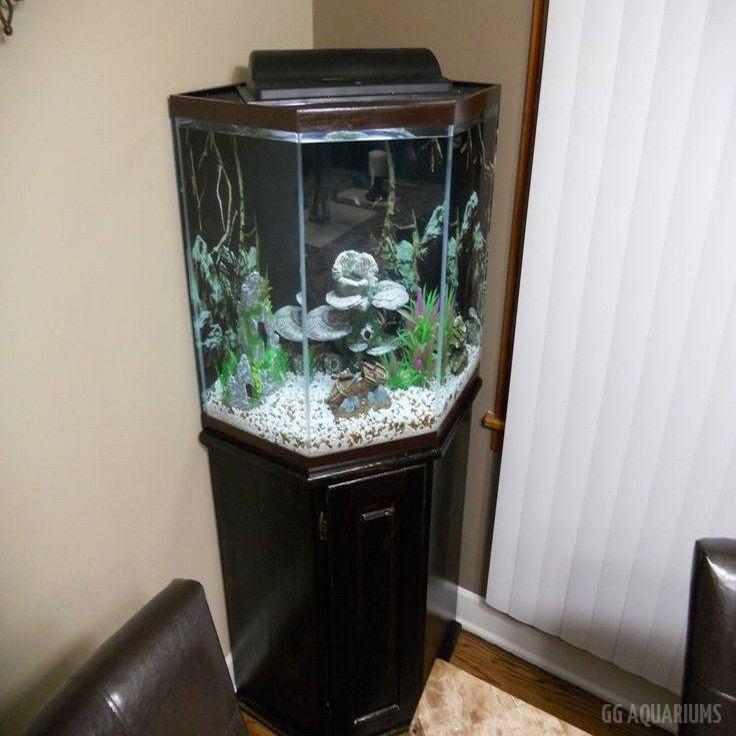 GG - Residential Aquarium  27