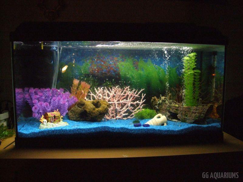 GG - Residential Aquarium  28