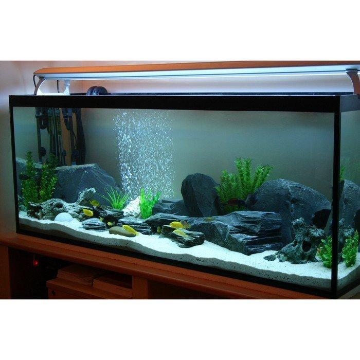 GG - Residential Aquarium  30