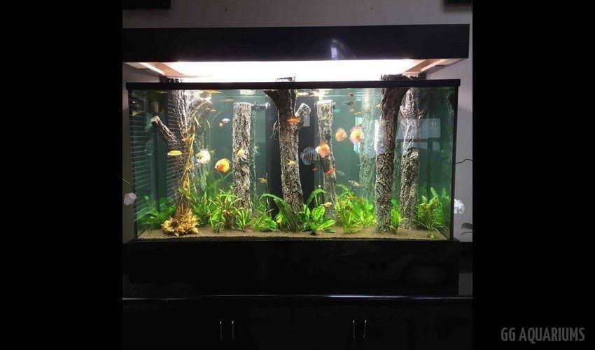 GG - Residential Aquarium  22