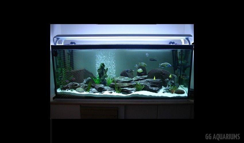 GG - Residential Aquarium  23