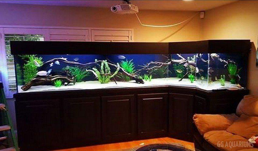 GG - Residential Aquarium  38