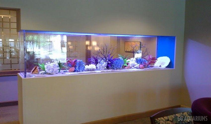 GG - Commercial Aquarium  39